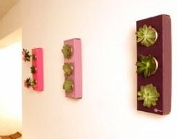 FlowerBox - Echte Pflanzen an die Wand hängen wie Bilder