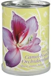 Orchidee aus der Dose - Blumengrüße mal anders!