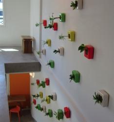 FlowerBox sorgt für grüne Wände