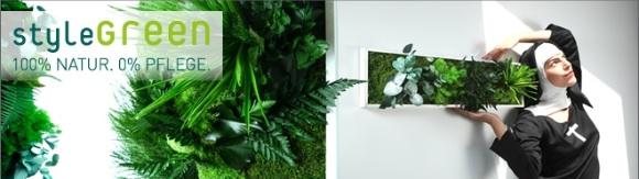 bodo.green - Neuer Shop für Pflanzen & Design in Kombination